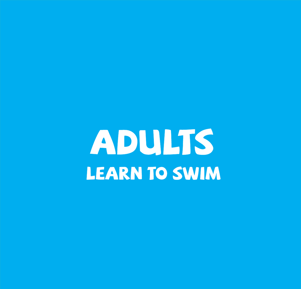 Adults who are wanting to  learn to swim  or are looking for  stroke correction .  Small sized class is of 30 minutes duration and are lots of fun!