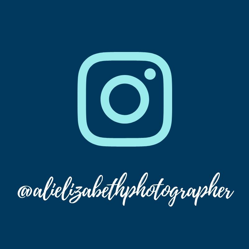 @alielizabethphotographer.jpg