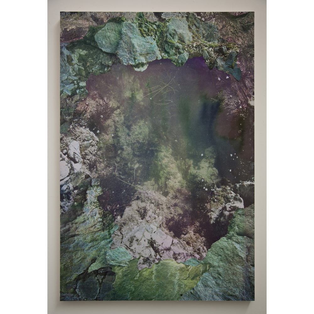 "Tidal Pool I,   archival pigment prints, collage on panel, 54"" x 43"", 2012."