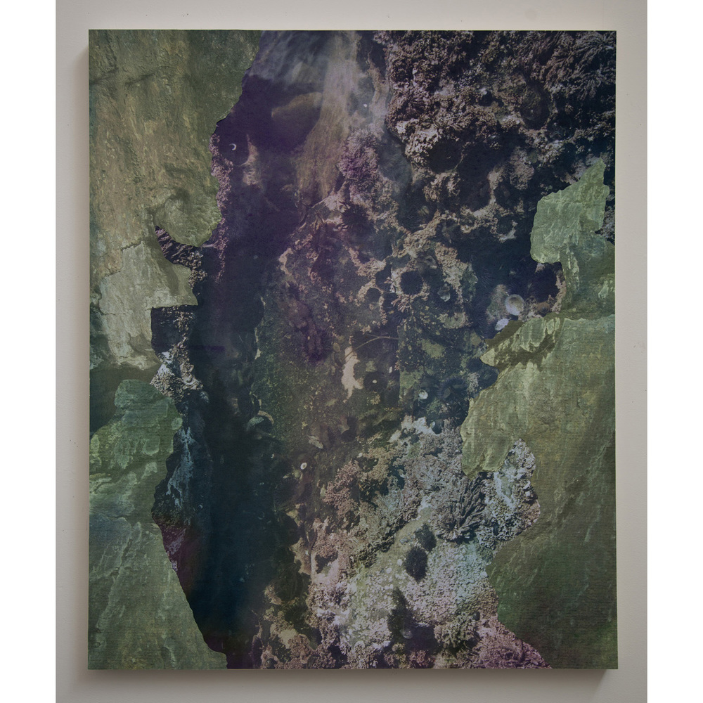 "Tidal Pool II,   archival pigment prints, collage on panel, 54"" x 43"", 2012."