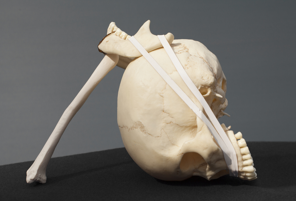 David's Sling (Magic Wand), 2014, plastic skull, bone and rubber bands