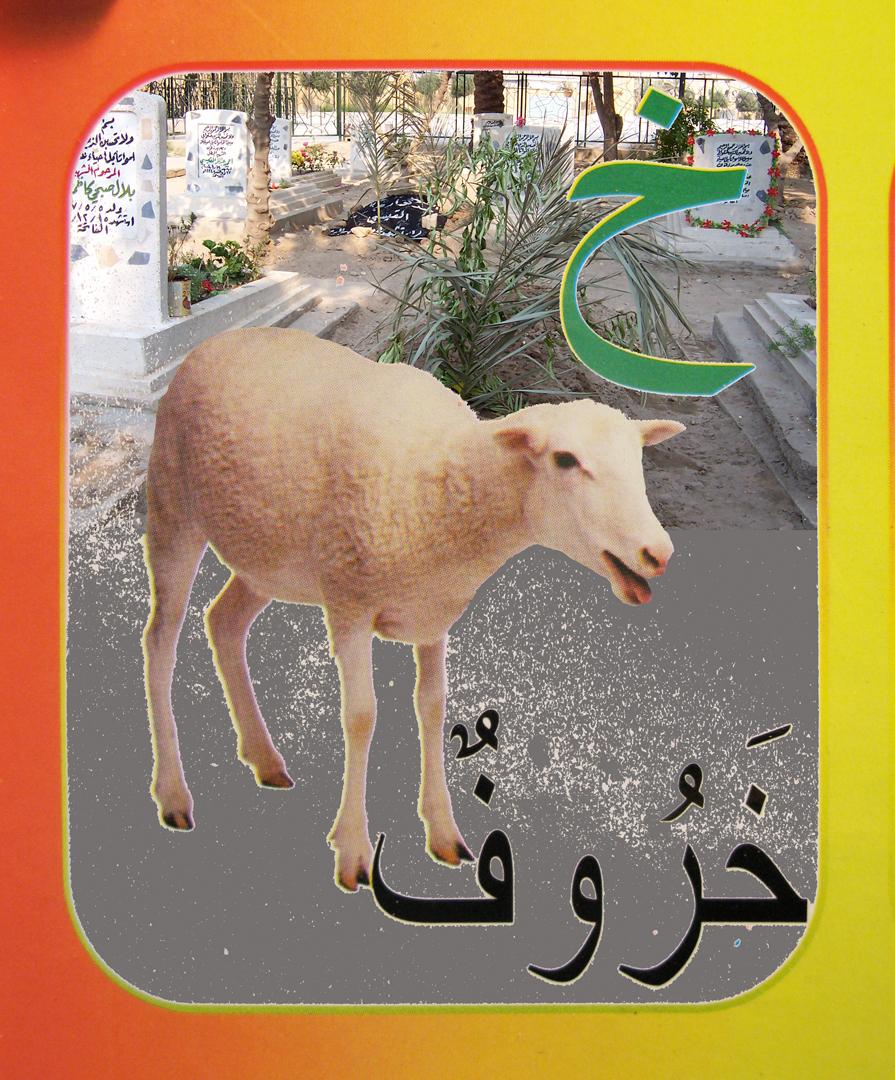 7. sheep flat.jpg