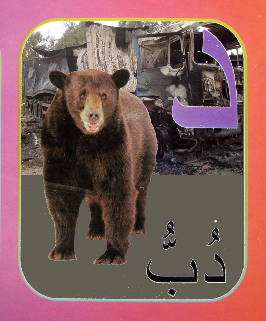 8. bear flat.jpg