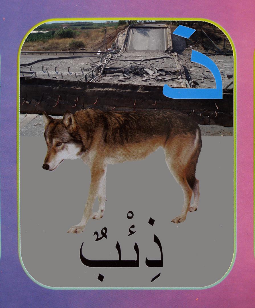 9. wolf flat.jpg