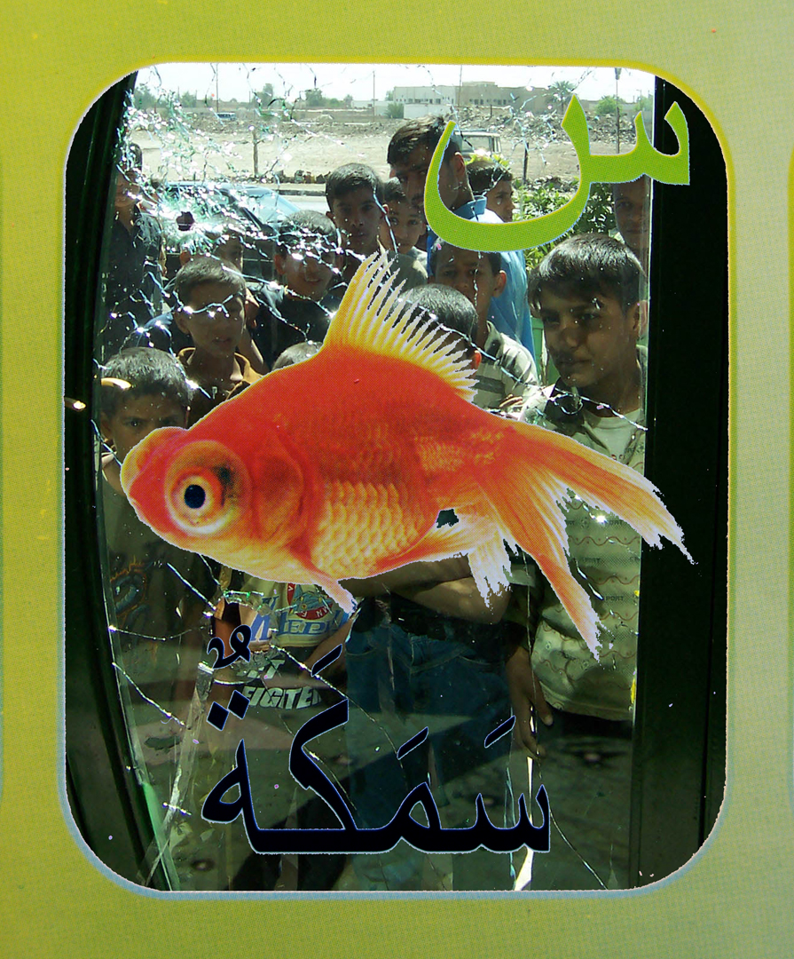 12. goldfish flat.jpg