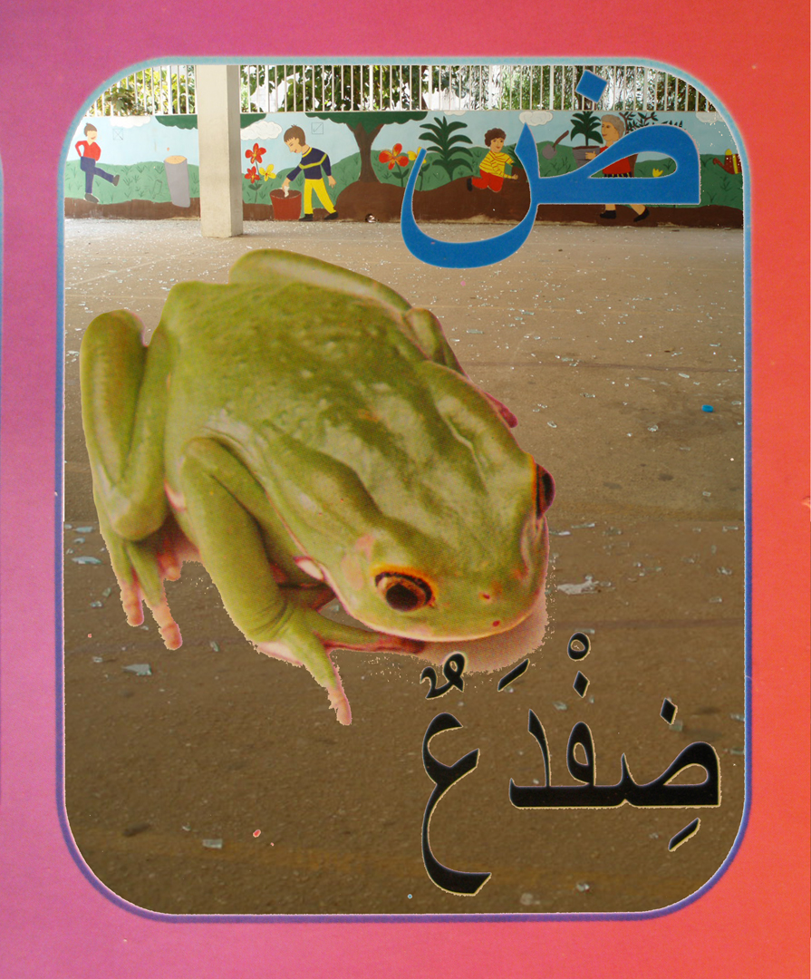 15. frog flat.jpg