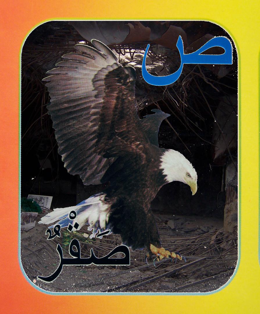 14. eagle flat.jpg