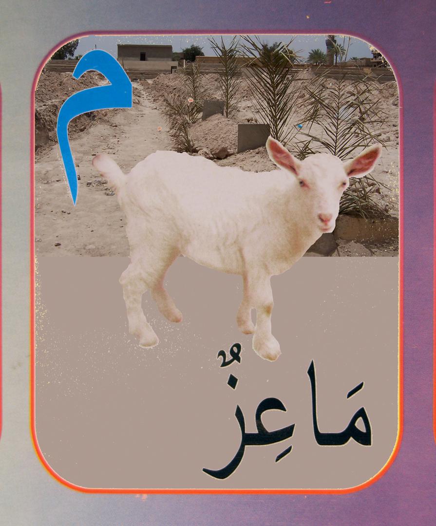 24. lamb flat.jpg