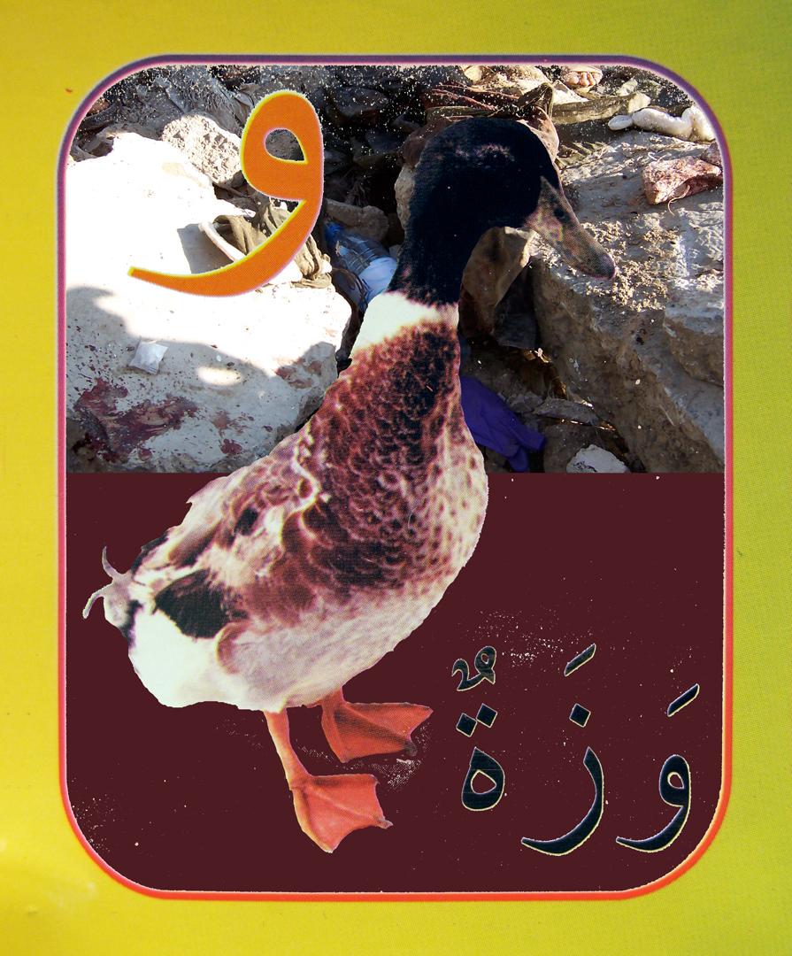 27. duck flat.jpg