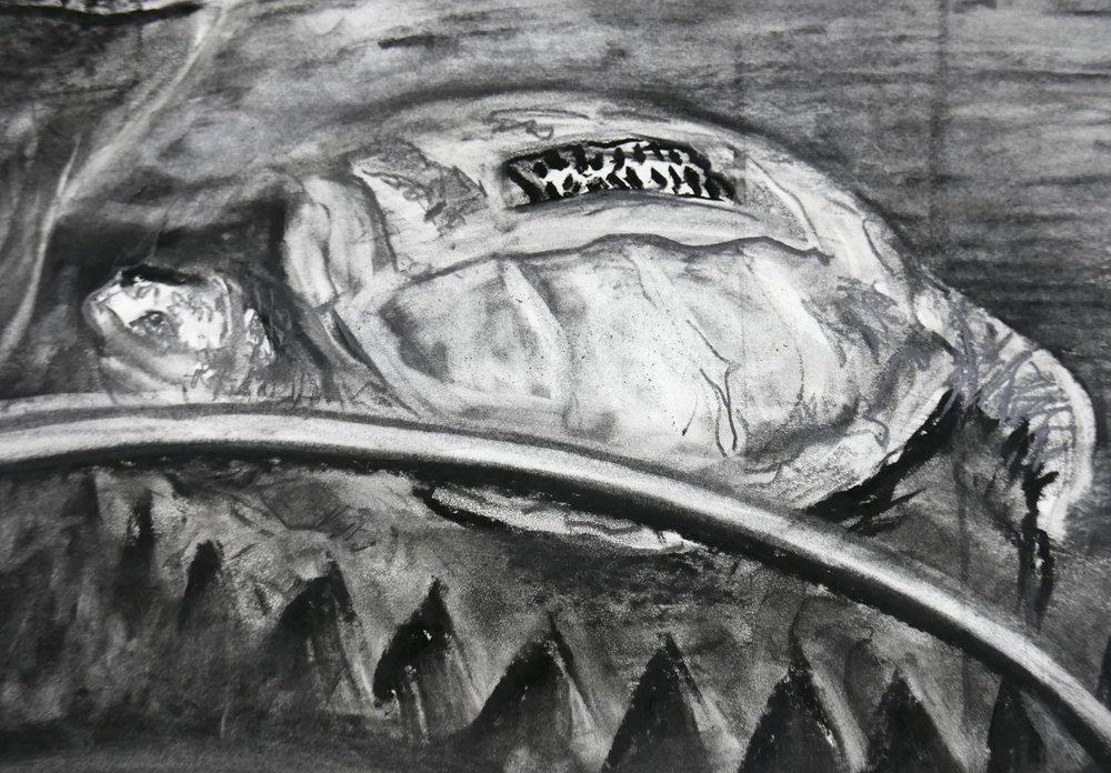 Detail of JEFFERSON MARSYAS (embargo turtle)
