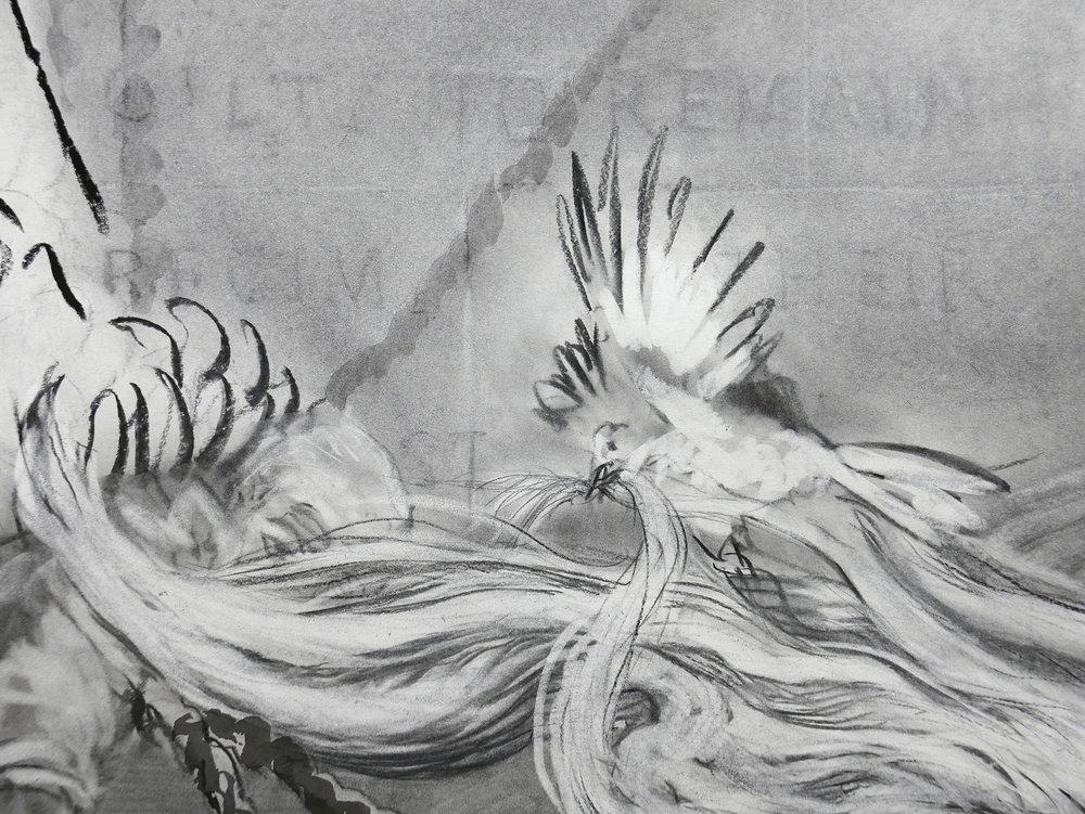 Detail of JEFFERSON MARSYAS (Dick, one of Thomas Jefferson's mockingbirds, nesting)