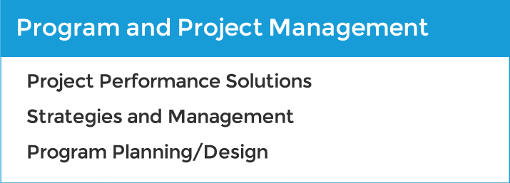 Program and Project Management services: project performance solutions, strategies and management, program planning and design.