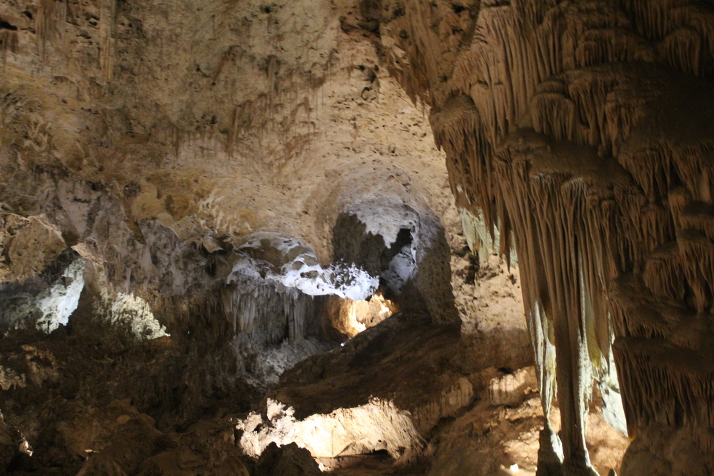 Inside the Carlsbad Cave