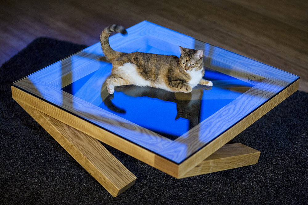 "Priya our 3 legged cat hanging out on our new work of art optical illusion table. ""It's still got one leg at each of the four corners, so the weight is evenly distributed,"" Jose tells me."