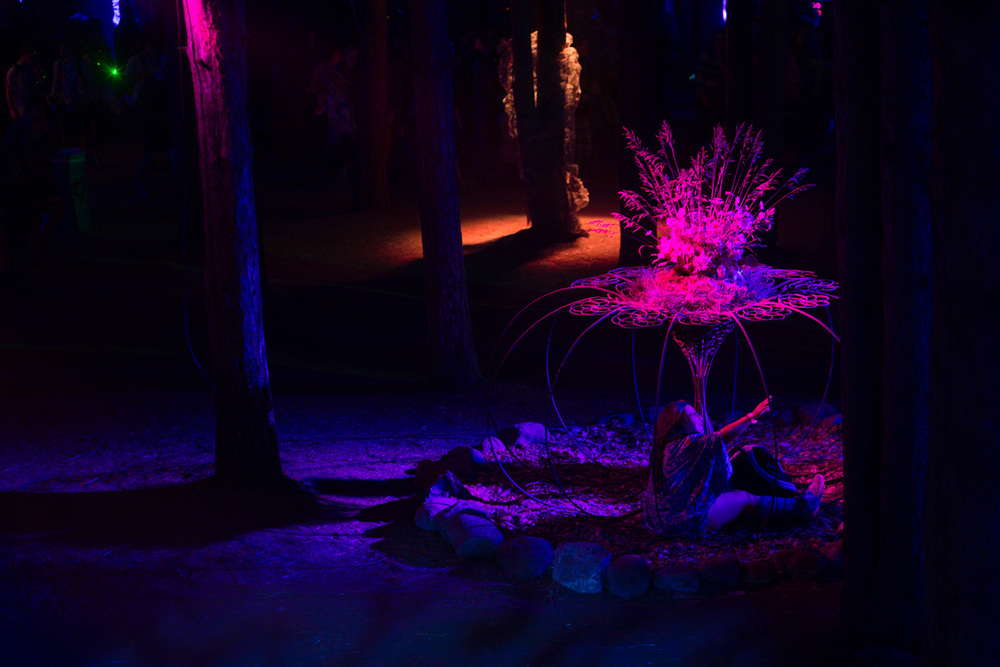 ElectricForest-56972.jpg
