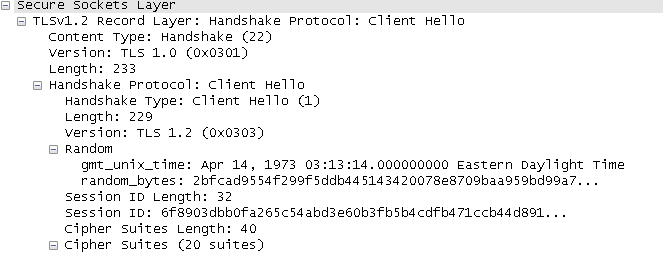 Fig 2. Figure 2 – During a real encrypted Internet transaction, a client generates a random number which is shared with the server. This output is from the author's Wireshark dump.