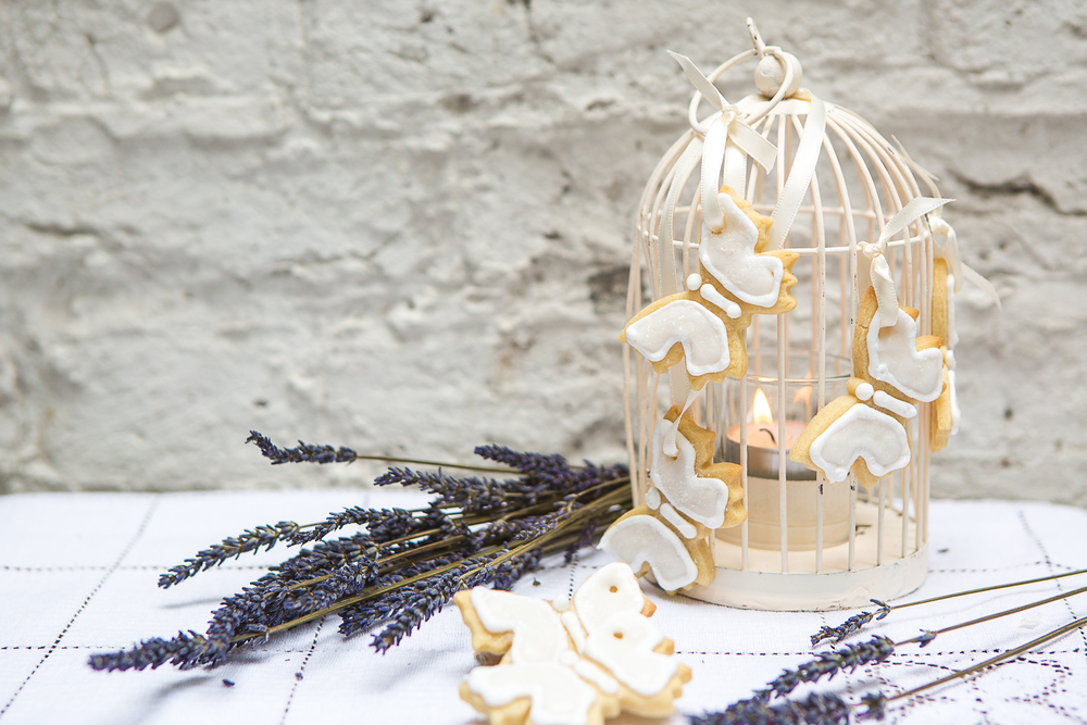 birdcage butterfly biscuits.jpg