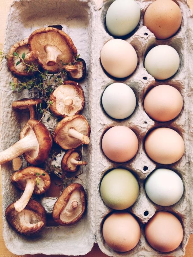 farm-egg.jpg