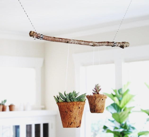 succulent-planter.jpg