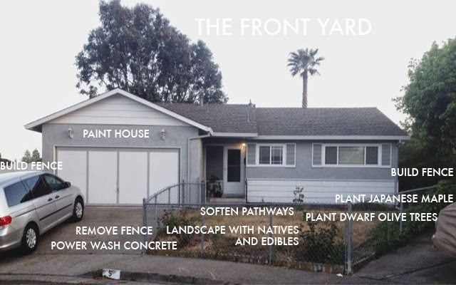 thefrontyard.jpg