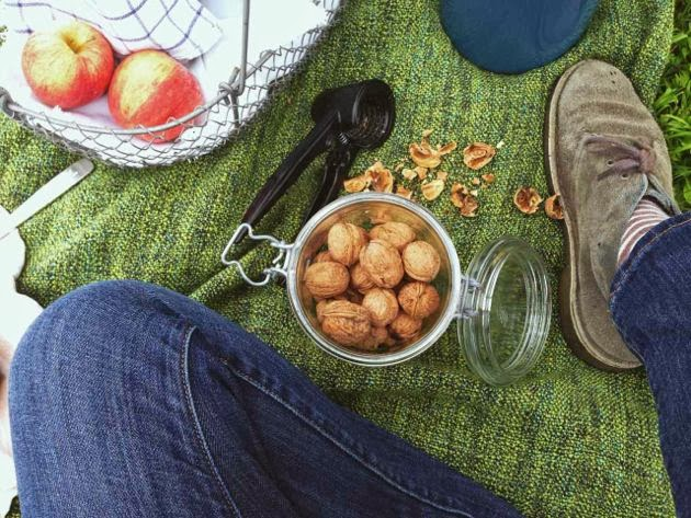 picnic-blanket.jpg