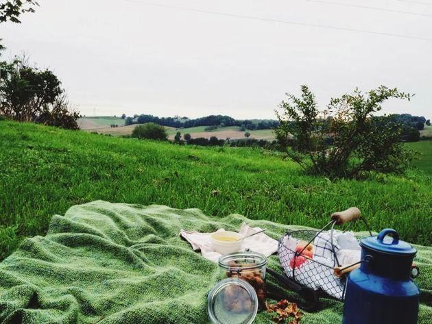 picnic-france.jpg