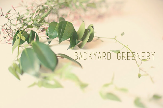 backyard+greenery.JPG