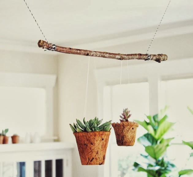 flora-trapeze.jpg