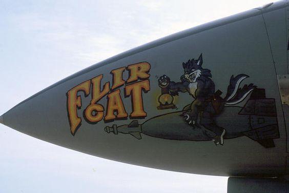 PEL_f14bflircat_01b.jpg
