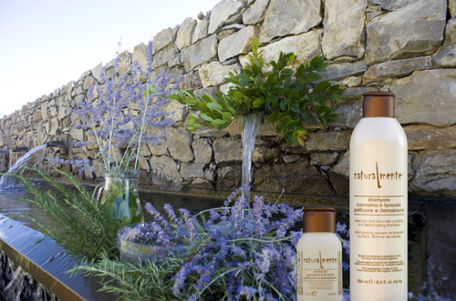 Shampoo Rosmarino