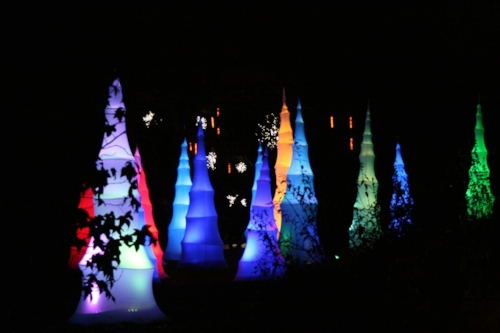 kew-christmas-lights_.jpg