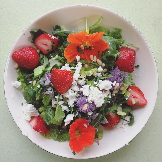 One of the best salads I've made in a while: romaine, baby arugula, strawberries, nasturtium, chives, goat cheese, pine nuts, horseradish mustard vinaigrette. #salad #flowerpower #seasonal #plantbased #spring #foodstagram