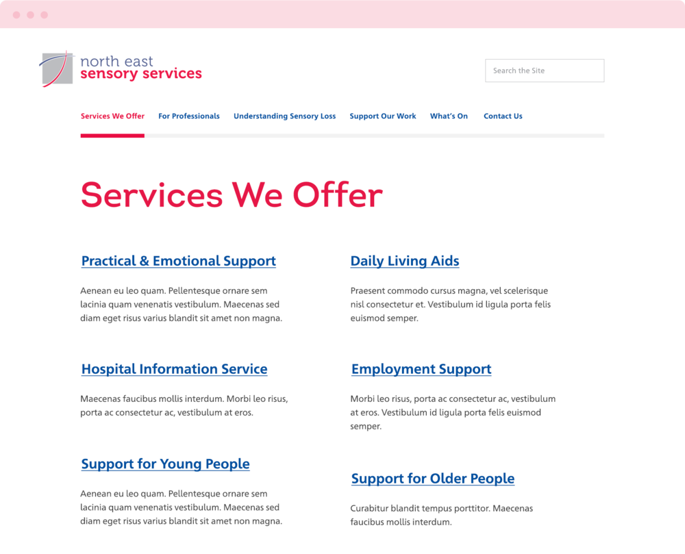 NESS-Services-Desktop.png