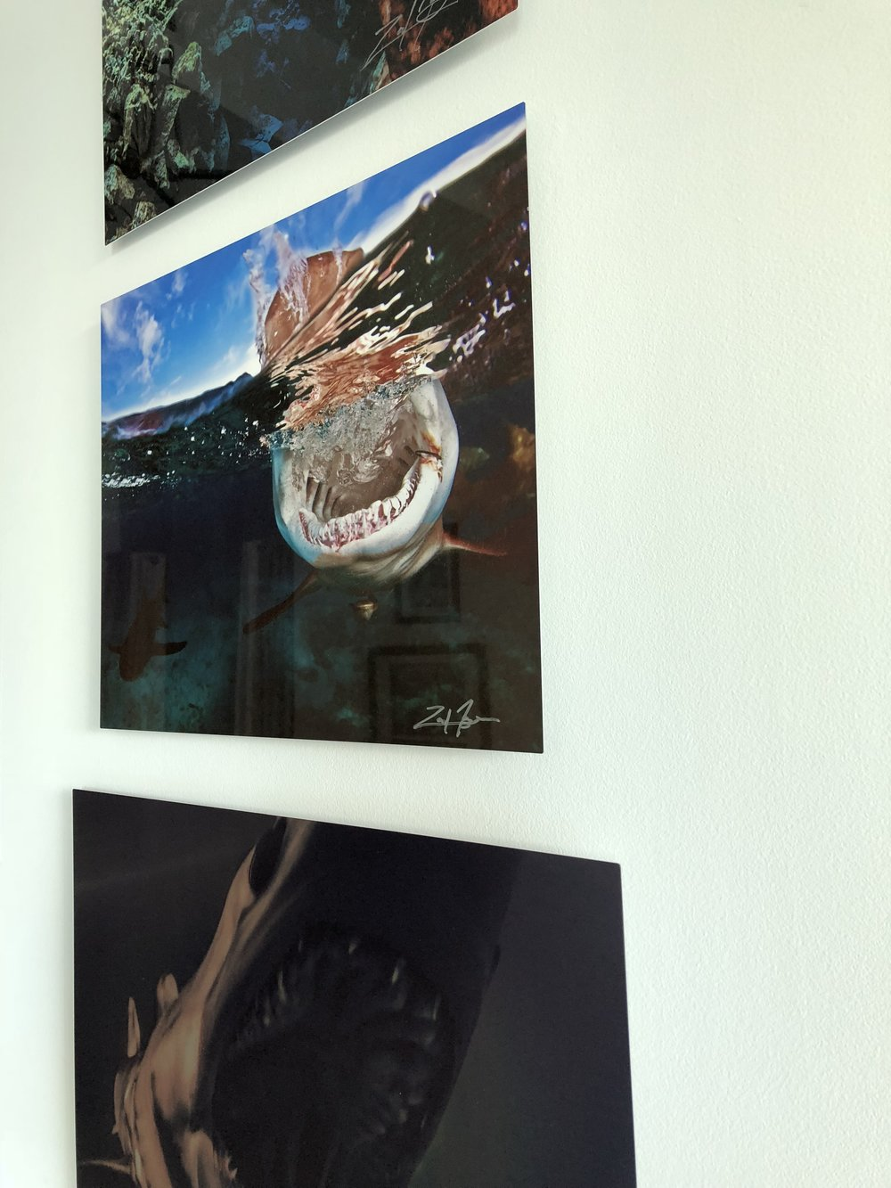 The reflective quality of our aluminum prints adds luminous color, depth, and unsurpassed high resolution detail for a stunning contemporary look, no frames required -