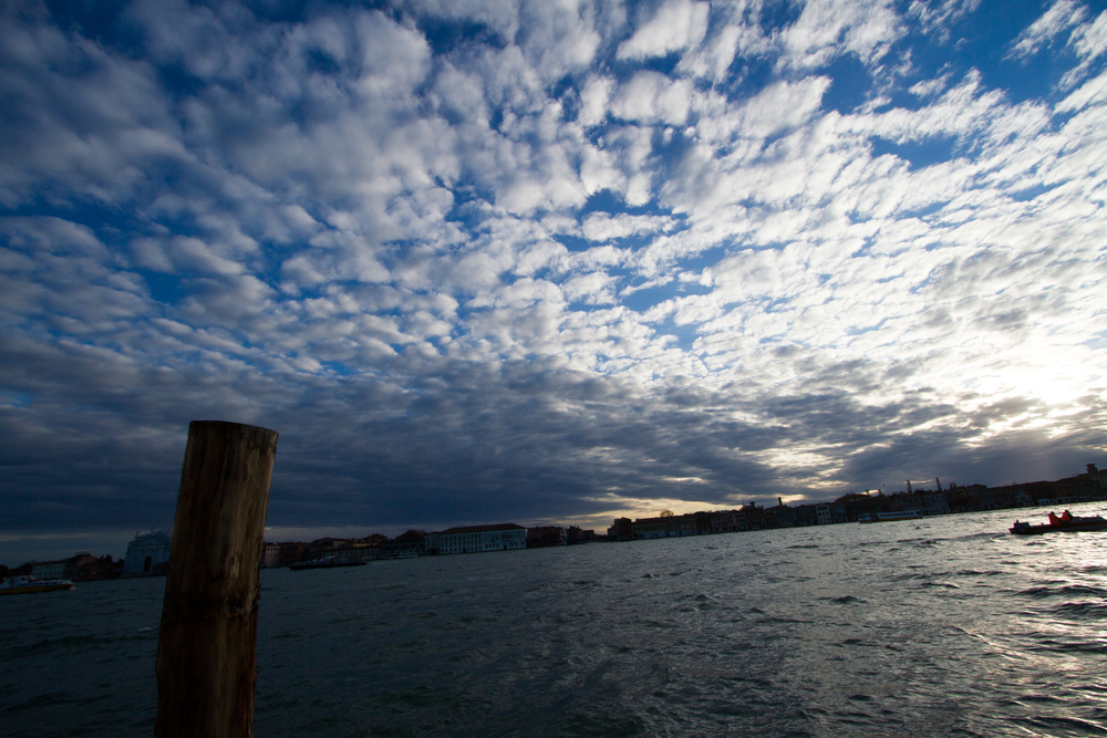 The Giudecca Canal. Photo: Amy Bown