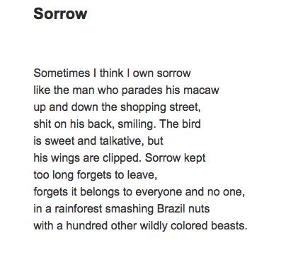Sorrow .png