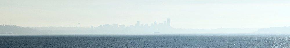 First Aid Arts Seattle Waterfront Skyline.jpg