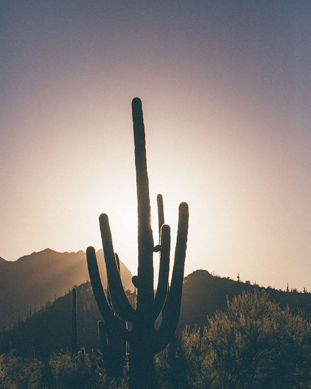 """""""Security is mostly superstition. It does not exist in nature, nor do the children of humans as a whole experience it. Avoiding danger is no safer in the long run then outright exposure. Life is either a daring adventure or nothing."""" -Helen Keller #getoutthere 🌵📷: @readygopictures"""