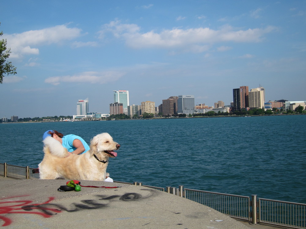 By the Detroit River.  The other side of the river is Canada.  Also a nice picture of a random person brushing her dog.