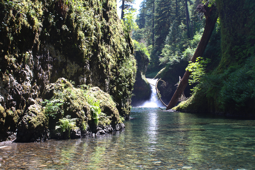 Punchbowl Falls, a popular and highly photographed stop on the trail. For many families, this is the end of their journey.