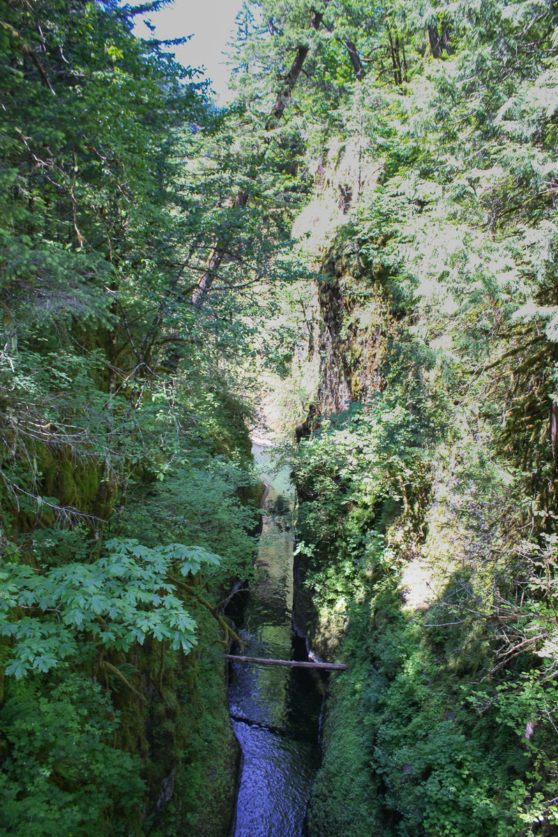 This is the view from above High Bridge. The gorge narrows quite a bit but is still over 100 ft high.