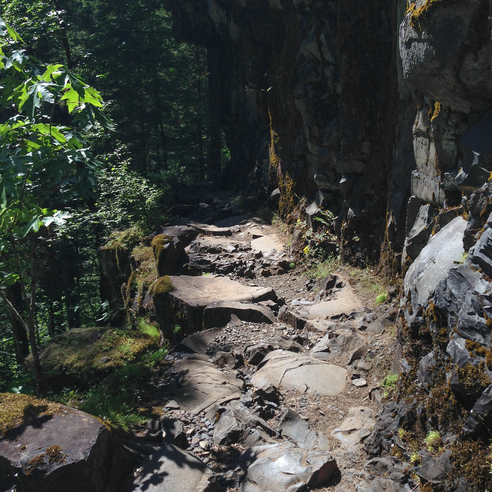 Leaving the Falls, we re-treked over what is known as the potholes, really unique rock steps along the trail.