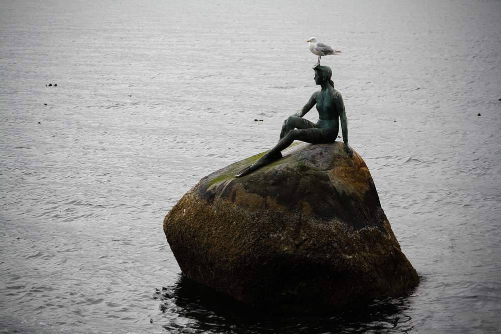 """Bird. Statue. Rock. Water."""