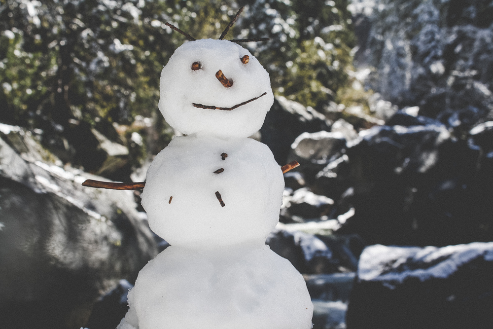 Ugh...this snowman is better than our snowman.