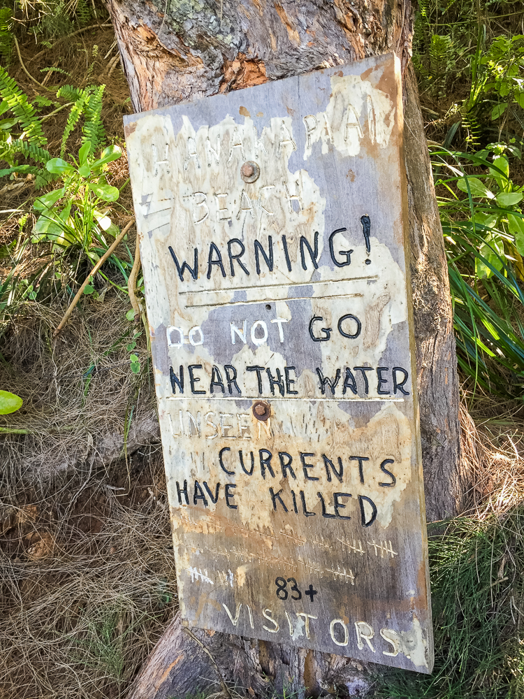 The warning sign at the beach.