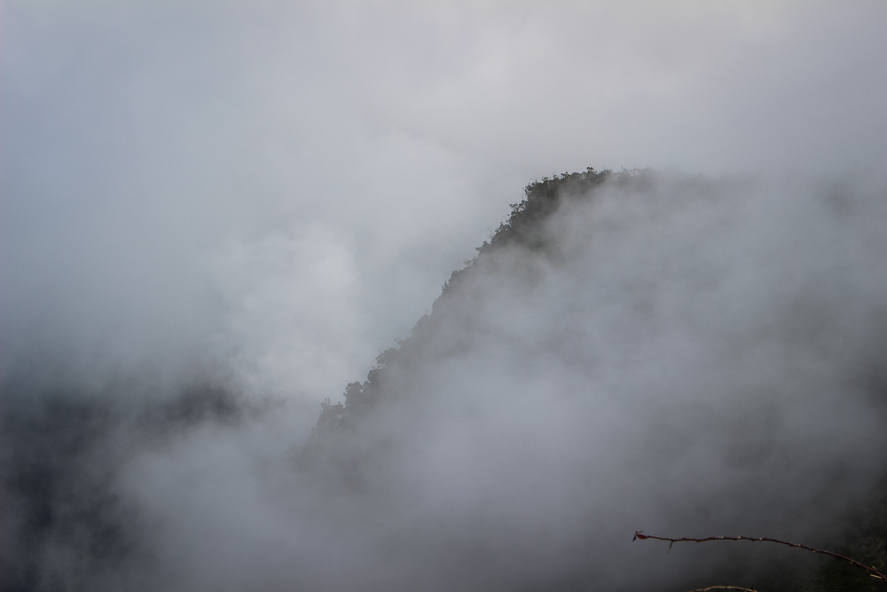 I love this picture! It reminds me of our  cruise through a foggy Tracy Arm , in Alaska.