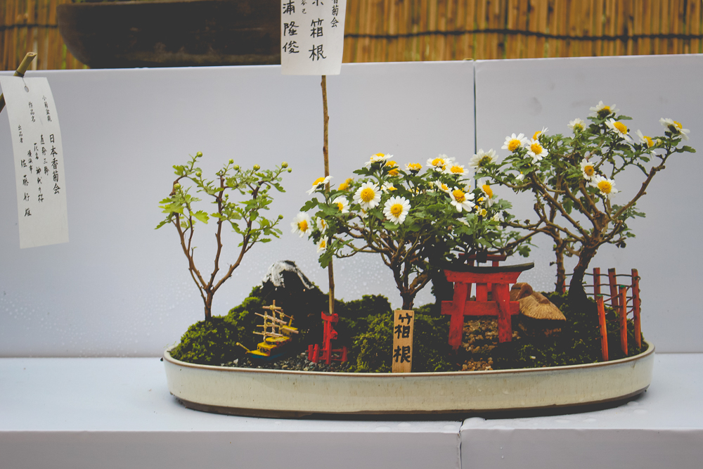 I don't know if these bonsai scenes have a proper name, but I love them.