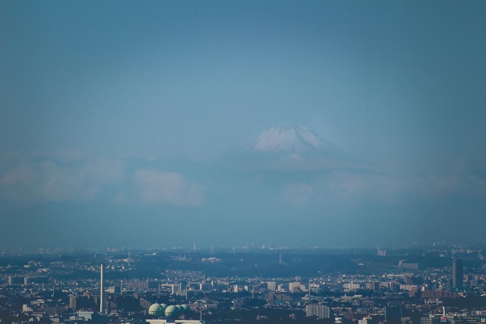 Mt. Fuji, chillin' in the distance.