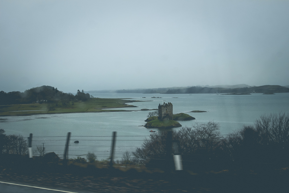 Another view of Castle Stalker as we zipped by. The only safe place to stop was a cafe, clearly popular for its views of the castle. We didn't feel right stopping and not dining, so...