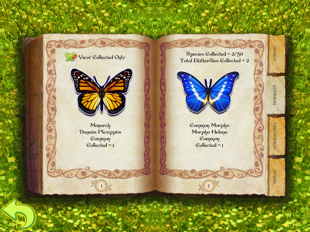 View all collected butterflies in the encyclopedia and learn more about them.